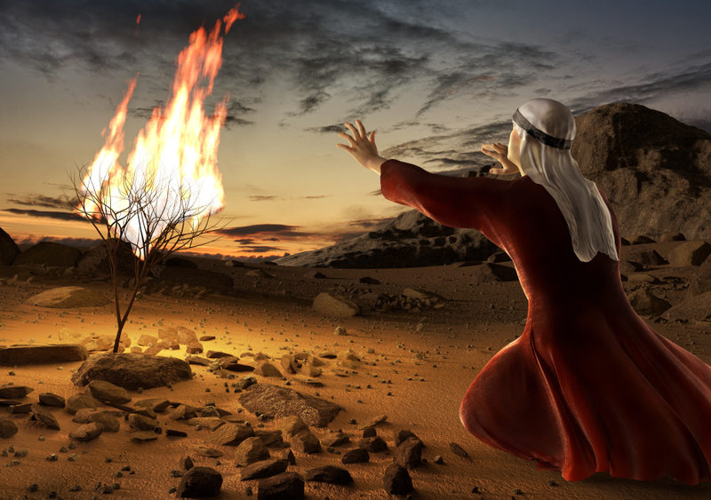 God Has Burning Bushes Set Up In Your Life! Are You Seeing Them? Are You Listening?
