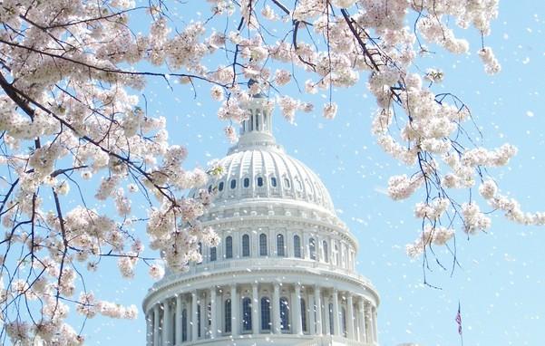 Billy Graham and a Vision at the US Capitol Rotunda