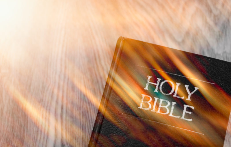 Reading the Bible in Fellowship with the Holy Spirit