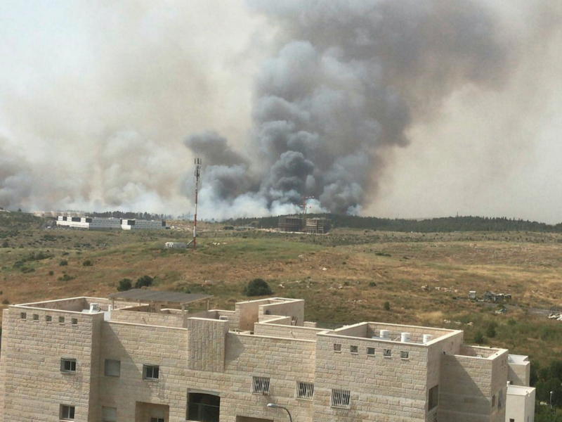 Israeli Fire Department: Mass Blazes Caused by Arson