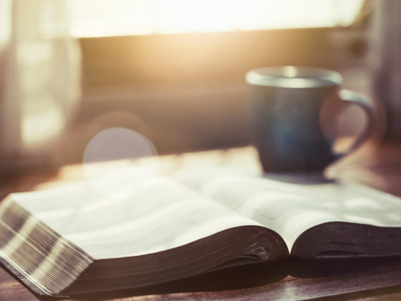 Daily Bible Devotions – a Key to Success in Life and Ministry