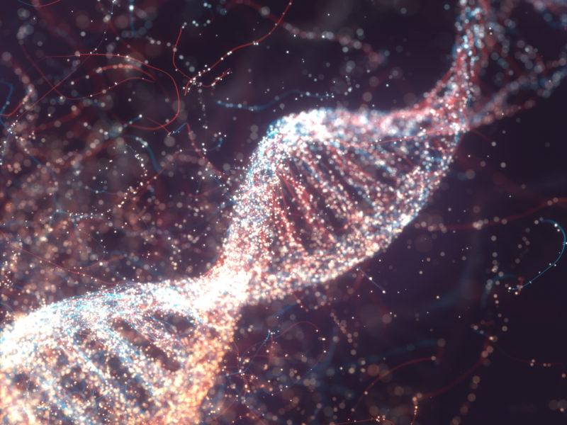 We Have God's DNA
