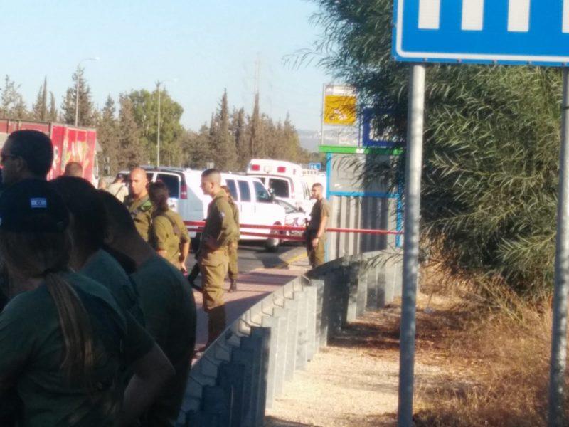 Woman Injured in Stabbing Attack; Terrorist Captured