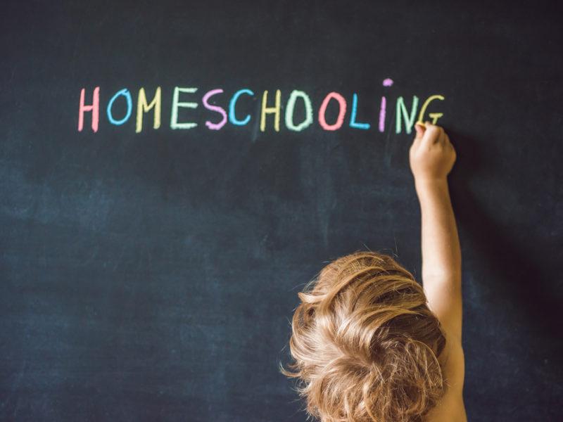 Homeschooling: An Accelerated Christian Education Program