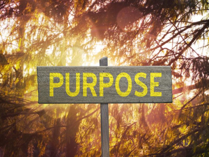 Your Purpose Barometer