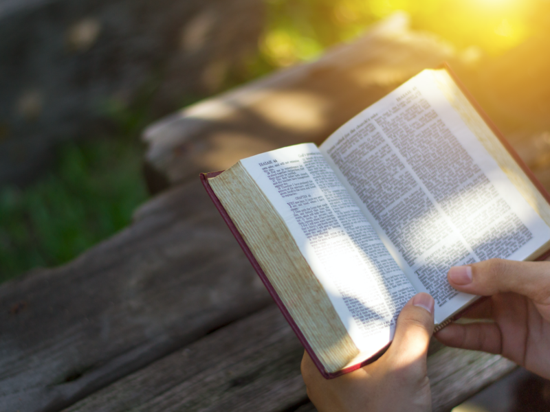 Lessons From The Beatitudes: Meekness