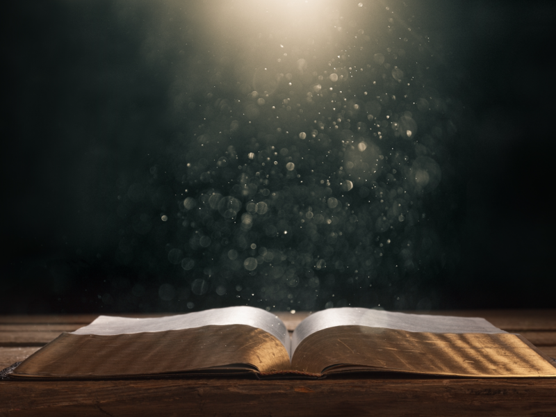 40 Day Challenge Day #35 – Living & Written Word