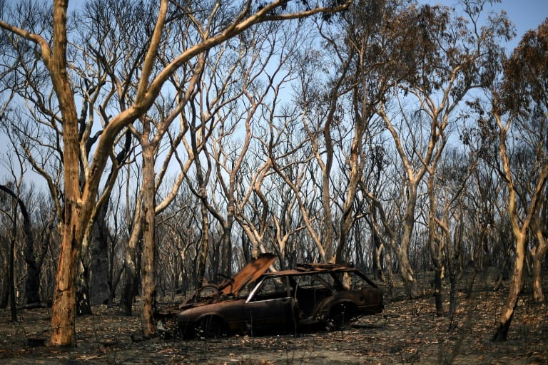 Australia's New South Wales Now Free From Bushfires After More Than 8 Months