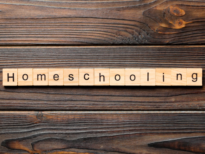 Virtual Learning And 4 Reasons We Benefit From Homeschooling