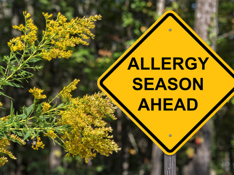 Dear Allergy Sufferer: God Will Give You an Answer of Peace
