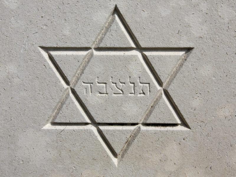 450 Orgs Worldwide Adopt IHRA Working Definition of Anti-Semitism