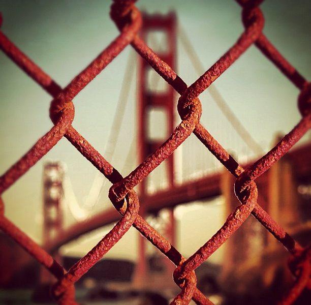 Build Bridges of Love