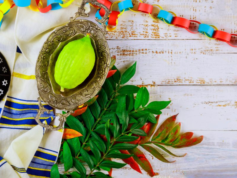 People Check The Four Species For Quality On Sukkot Eve